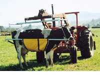 Anlift Cowlifters