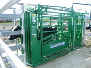 Dairy Handling Intro