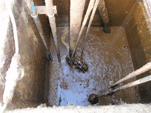 Eisele Vertical Stirr Pump Combination For Sludge