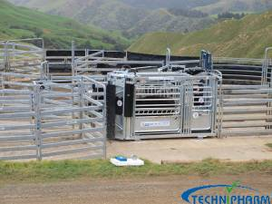 Highflow 260 Hd Extreme(tm) Cattle Handler